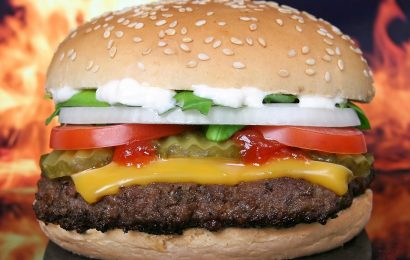 Pourquoi le sandwich est-il le plat le plus rapide et sympa qui existe sur terre ?